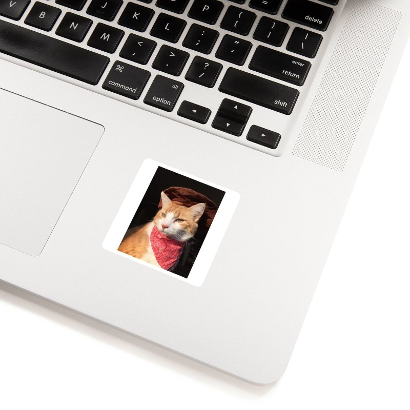 Cat Cowboy Accessories Sticker by Butters The Bean