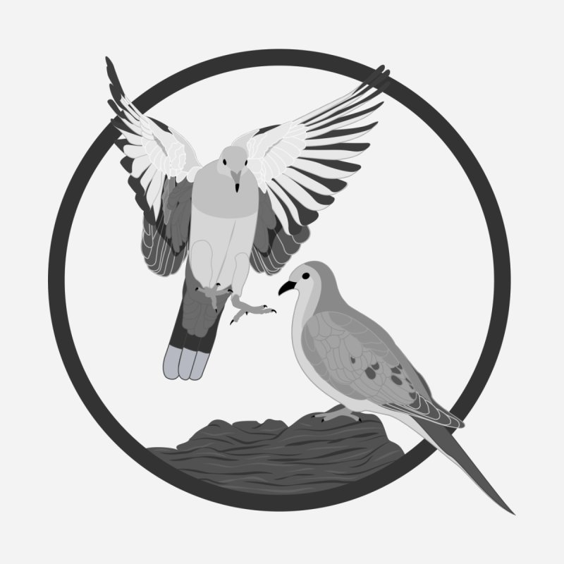 Mourning Doves - Circle Collection by buxmontweb's Artist Shop