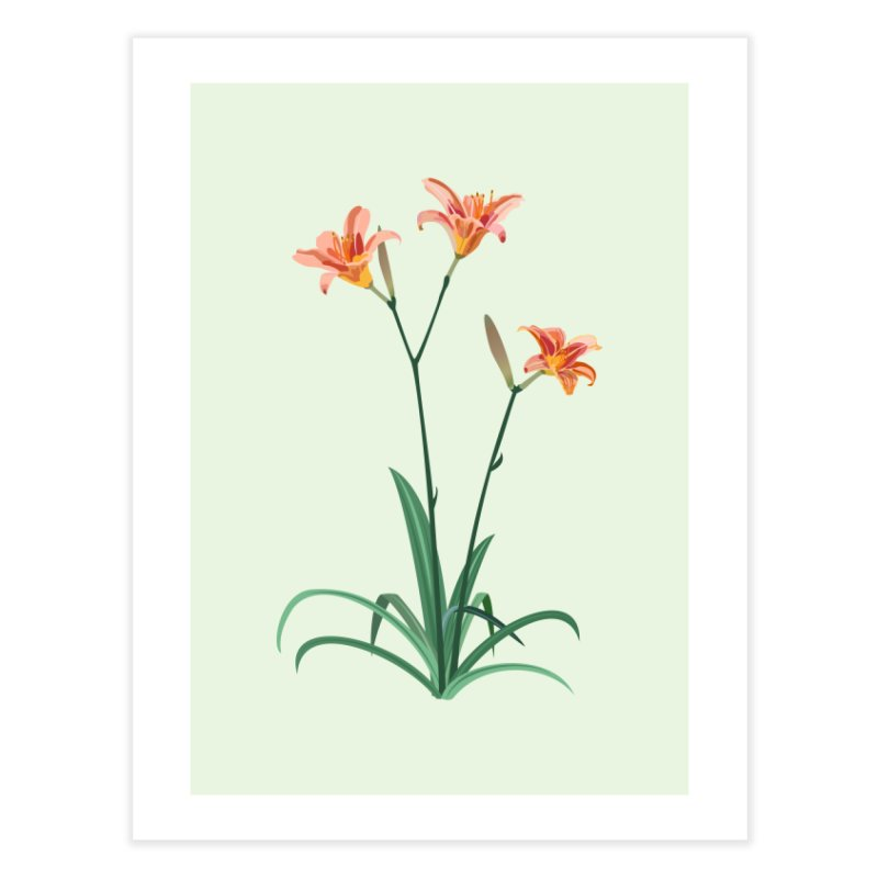 Daylilies - Wildflower Collection Home Fine Art Print by buxmontweb's Artist Shop
