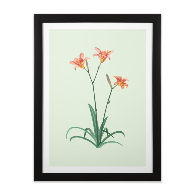 Daylilies - Wildflower Collection Home Framed Fine Art Print by buxmontweb's Artist Shop
