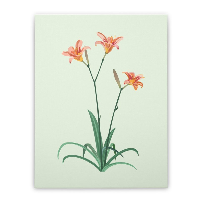 Daylilies - Wildflower Collection Home Stretched Canvas by buxmontweb's Artist Shop