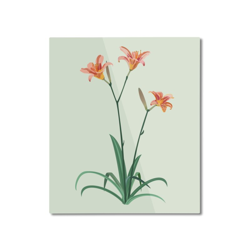 Daylilies - Wildflower Collection Home Mounted Aluminum Print by buxmontweb's Artist Shop