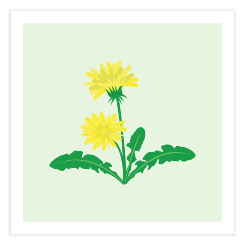 Dandelion - Wildflower Collection Home Fine Art Print by buxmontweb's Artist Shop