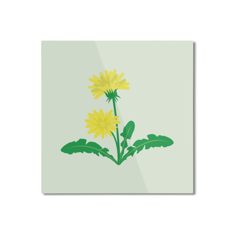 Dandelion - Wildflower Collection Home Mounted Aluminum Print by buxmontweb's Artist Shop