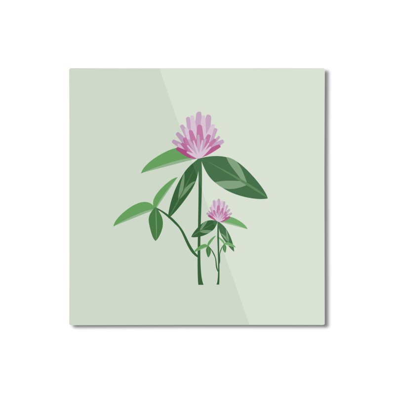 Red Clover - Wildflower Collection Home Mounted Aluminum Print by buxmontweb's Artist Shop