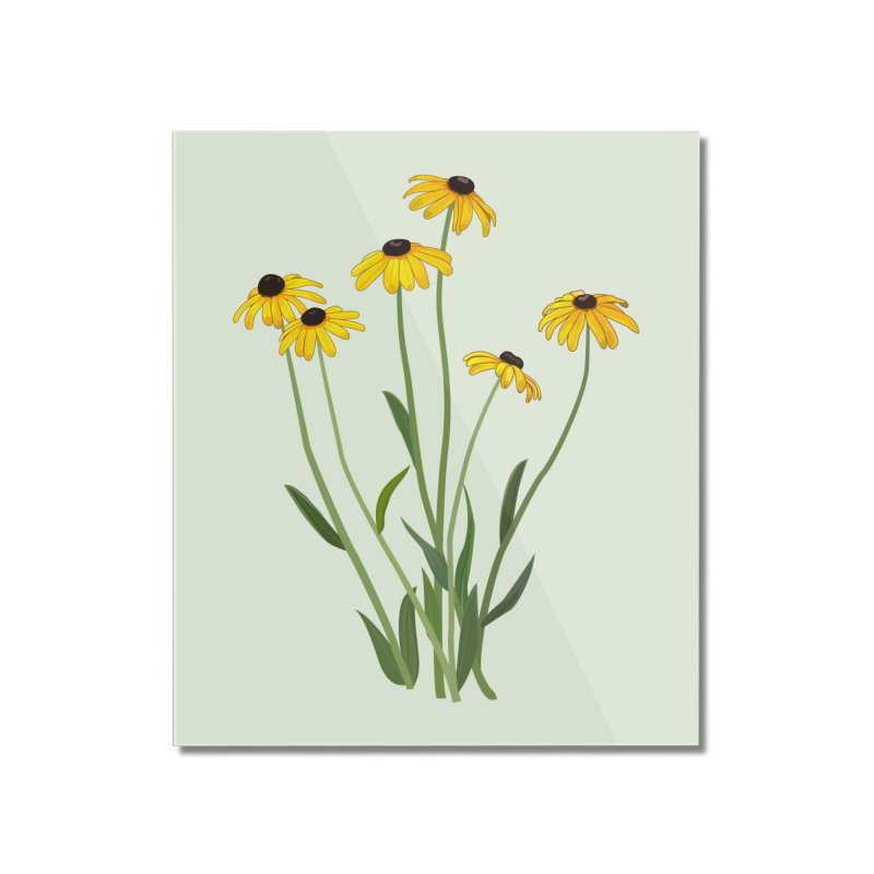 Black Eyed Susans - Wildflower Collection Home Mounted Acrylic Print by buxmontweb's Artist Shop