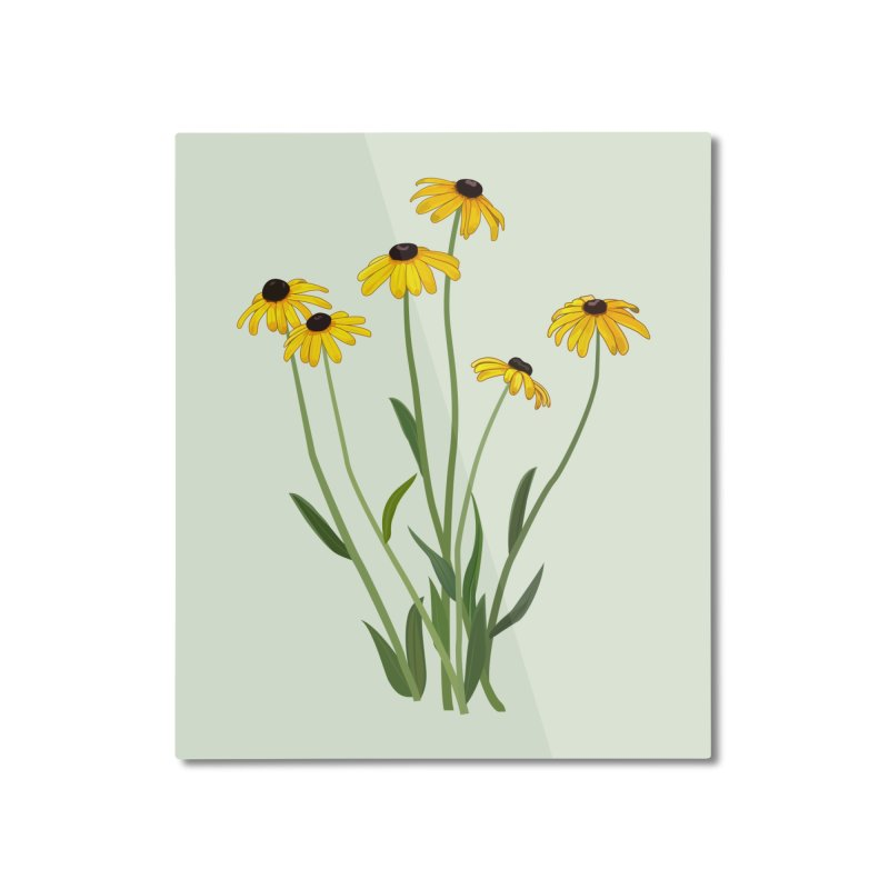 Black Eyed Susans - Wildflower Collection Home Mounted Aluminum Print by buxmontweb's Artist Shop