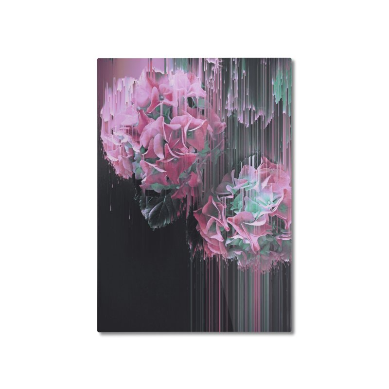 Glitch Pink Hydrangea Home Mounted Aluminum Print by cafelab