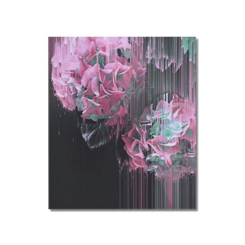 Glitch Pink Hydrangea Home Mounted Acrylic Print by cafelab