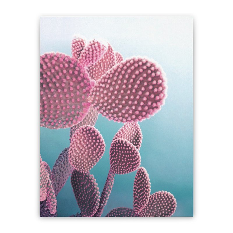 Candy Cactus Home Stretched Canvas by cafelab's Artist Shop