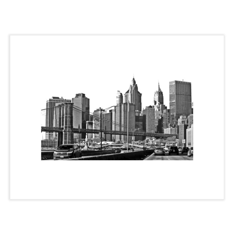 View from the FDR Home Fine Art Print by Cappytann's Artist Shop