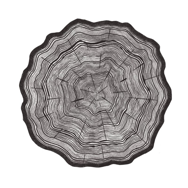 Tree Ring Accessories Phone Case by carolyn sehgal's Artist Shop