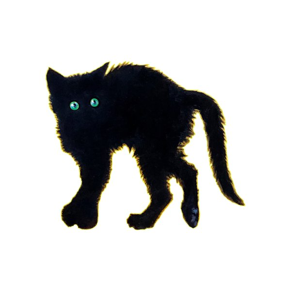 image for Black Kitten
