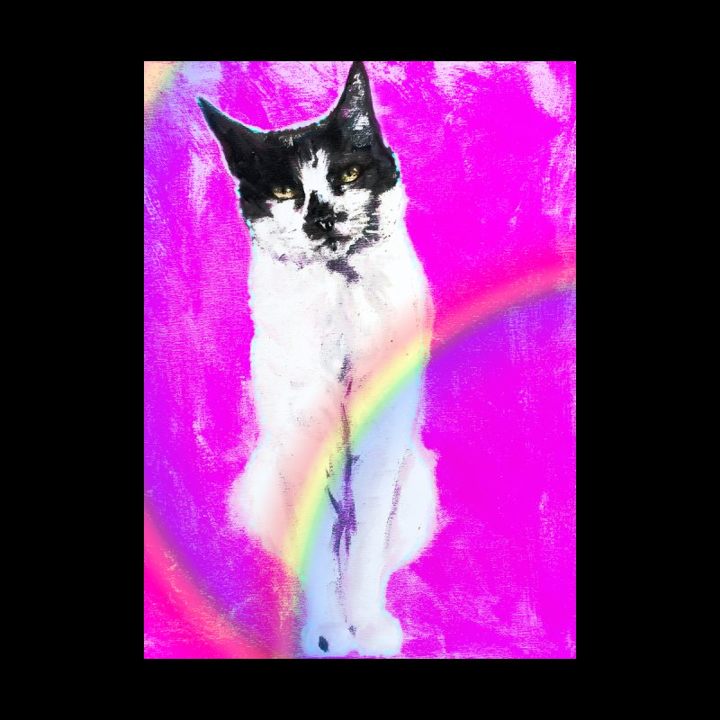 Charley Rainbow Home Shower Curtain by CatArt's Shop