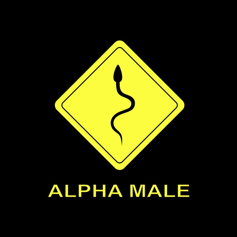 ALPHA MALE None  by CAT IN ORBIT Artist Shop