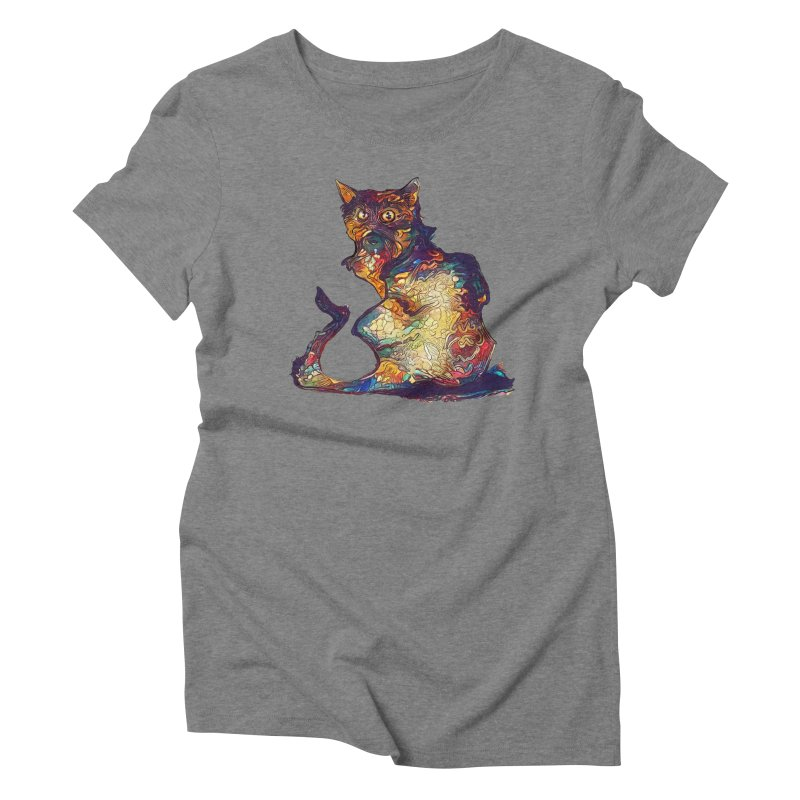 Bright and artsy Women's Triblend T-Shirt by Catopathy