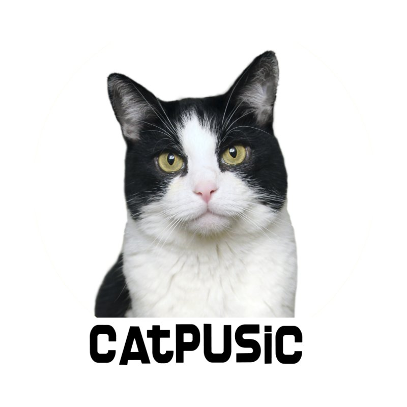 CatPusic by SHOP CatPusic