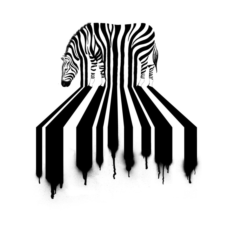 Zebra Crossing by cazking's Artist Shop