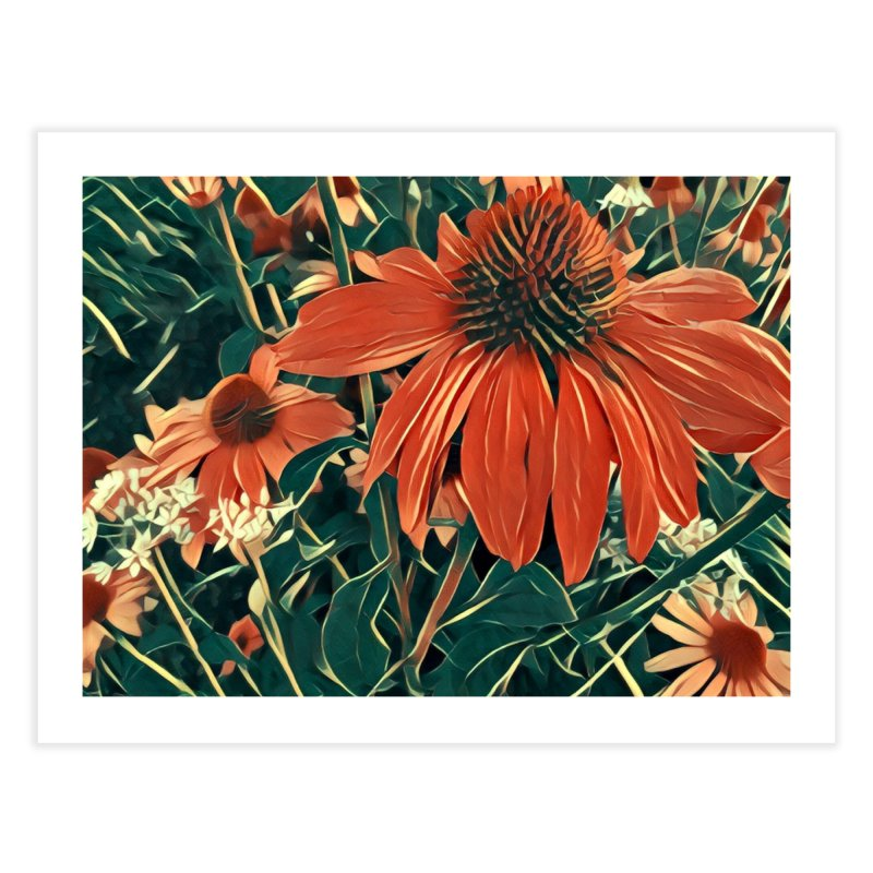 Dreamy Coneflowers Home Fine Art Print by C. Cooley's Artist Shop