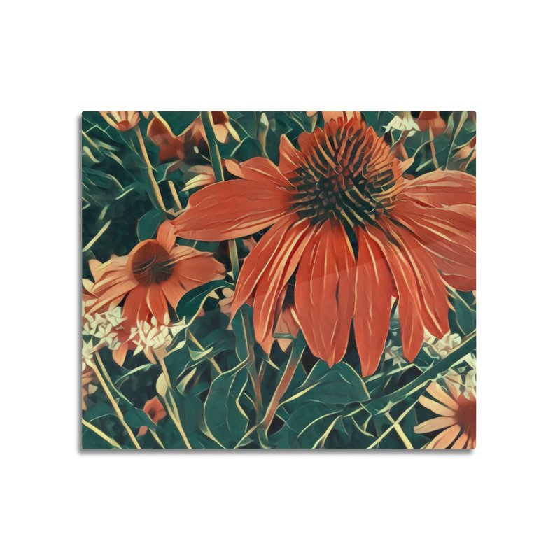 Dreamy Coneflowers Home Mounted Aluminum Print by C. Cooley's Artist Shop