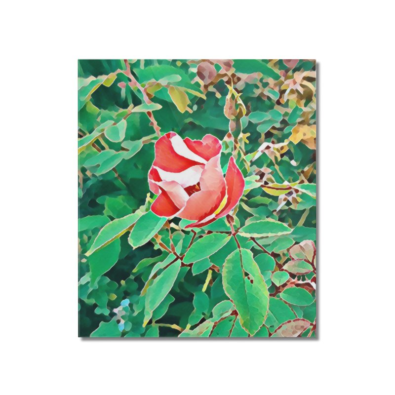 Bloom Home Mounted Acrylic Print by C. Cooley's Artist Shop