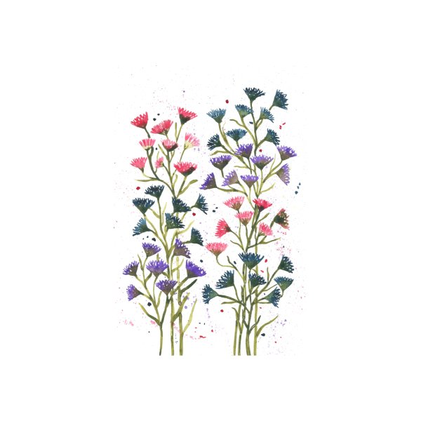 image for Colorful wildflowers
