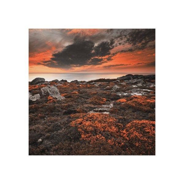 image for Orange beach near the Atlantic Ocean