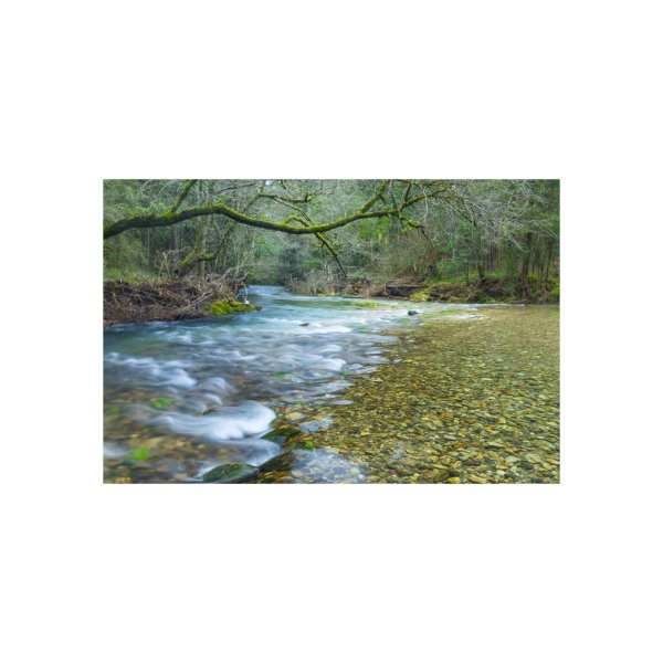 image for Relaxing landscape on the mountain river