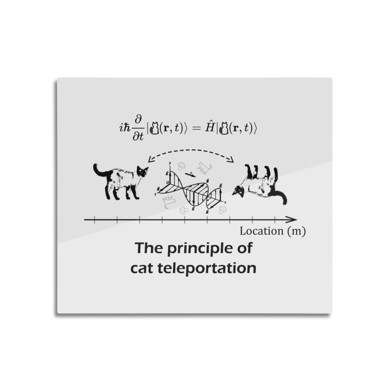 The Principle of Cat Teleportation Home Mounted Acrylic Print by Northern Limit