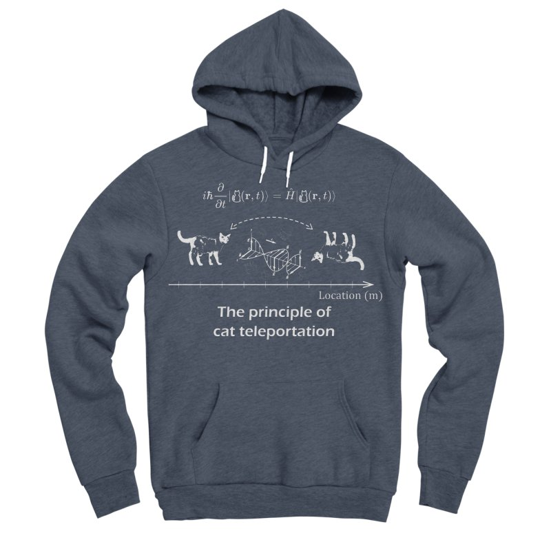 The Principle of Cat Teleportation Men's Sponge Fleece Pullover Hoody by Northern Limit