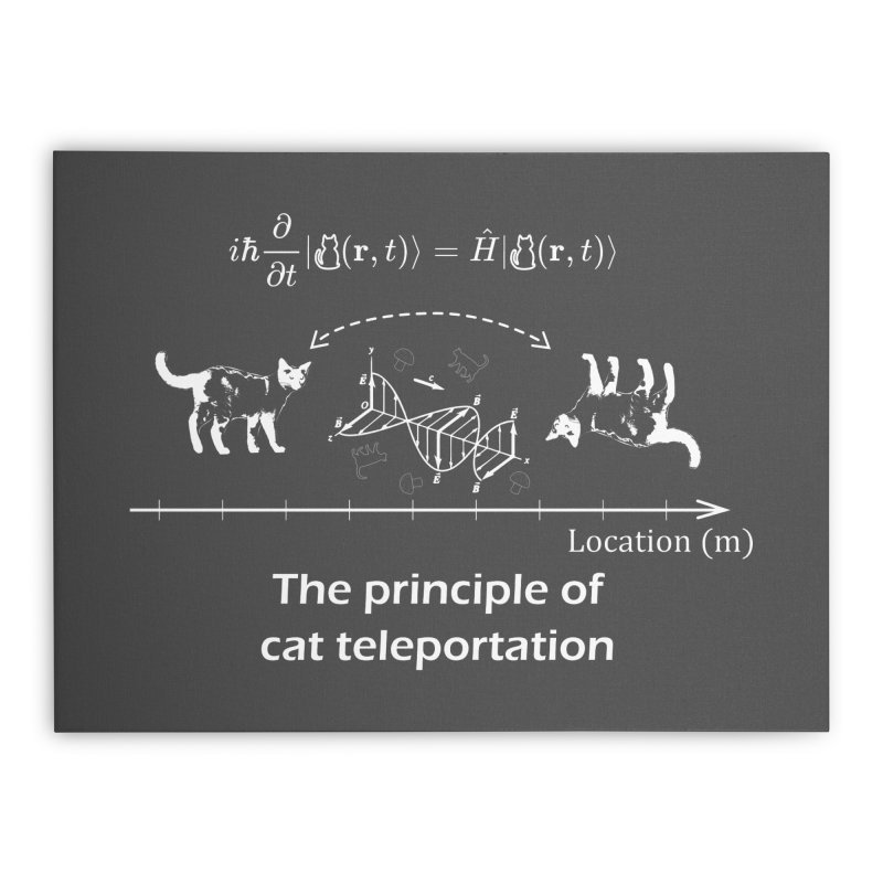 The Principle of Cat Teleportation Home Stretched Canvas by Northern Limit