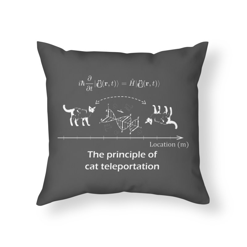 The Principle of Cat Teleportation Home Throw Pillow by Northern Limit