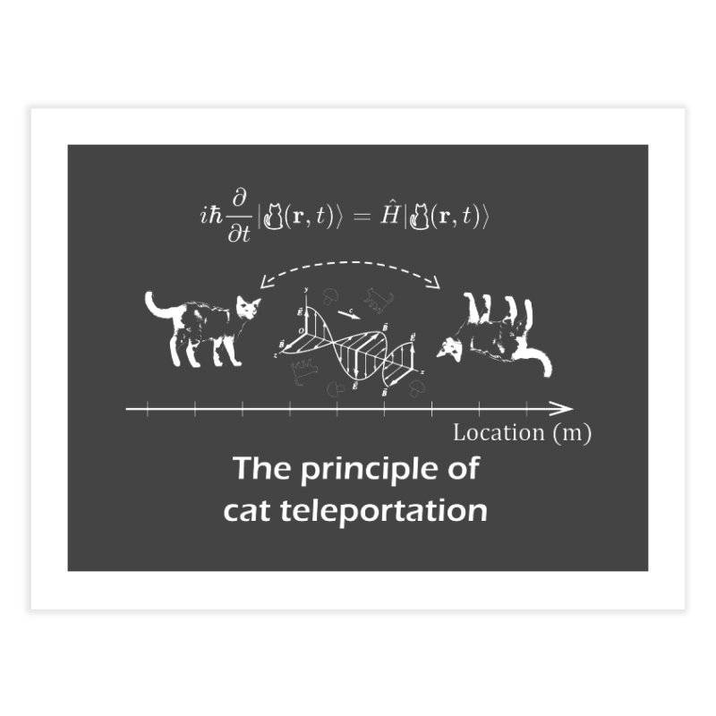 The Principle of Cat Teleportation Home Fine Art Print by Northern Limit