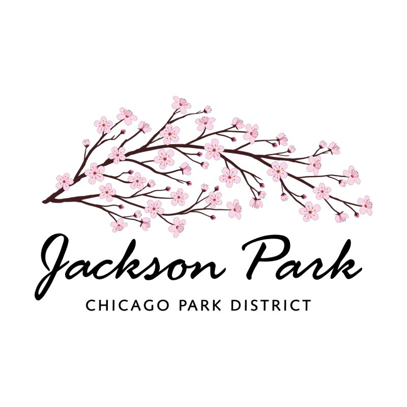 Jackson Park Cherry Blossoms Women's Pullover Hoody by chicago park district's Artist Shop