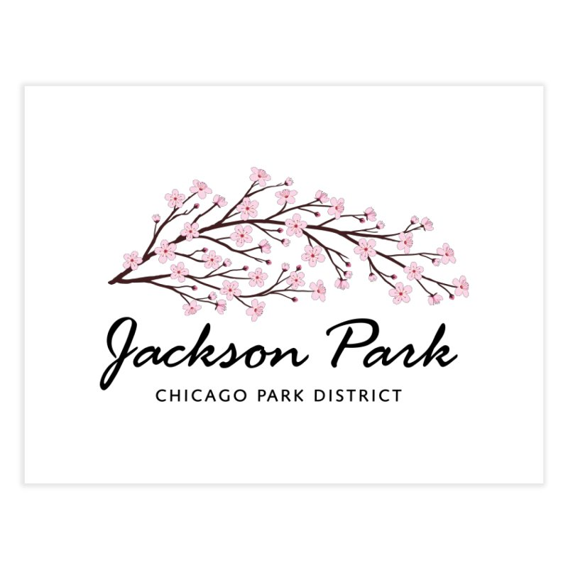 Jackson Park Cherry Blossoms Home Fine Art Print by chicago park district's Artist Shop