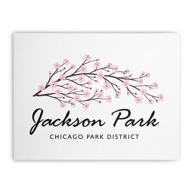 Jackson Park Cherry Blossoms Home Stretched Canvas by chicago park district's Artist Shop