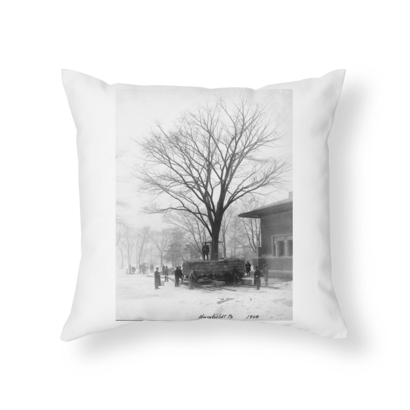 Vintage: Humboldt Park 1908 Home Throw Pillow by chicago park district's Artist Shop