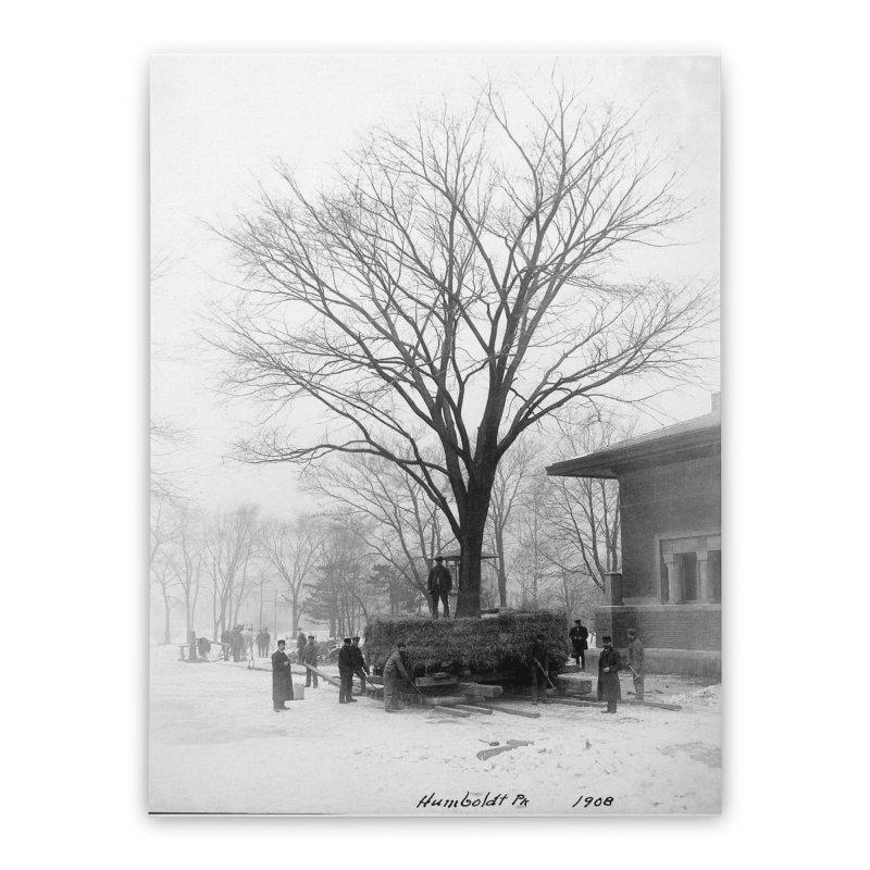 Vintage: Humboldt Park 1908 Home Stretched Canvas by chicago park district's Artist Shop