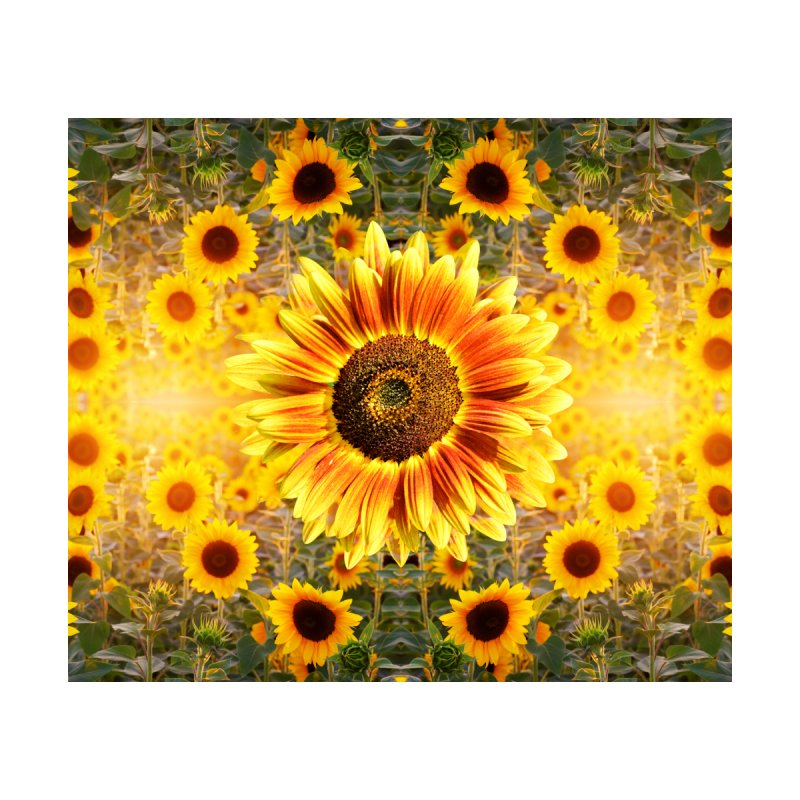 Sunflower Sunshine by chriscoffincreations