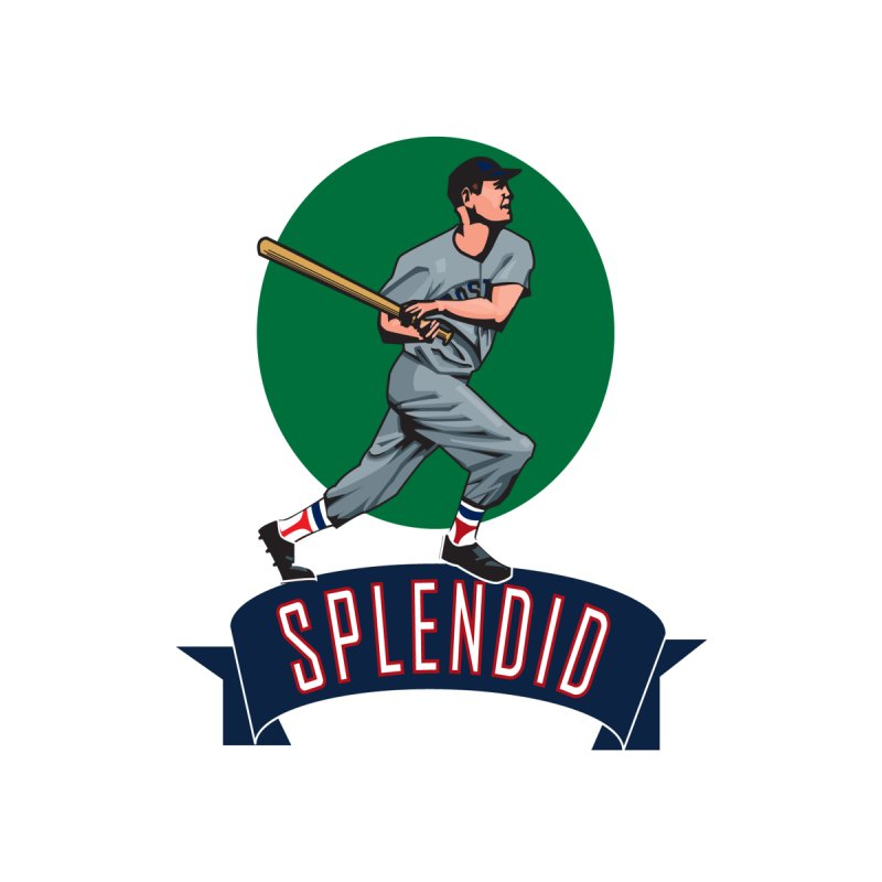 """splendid"" by cityshirts's Artist Shop"