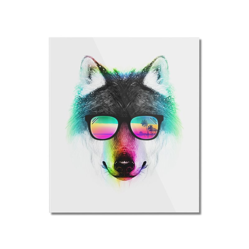 Summer Wolf Home Mounted Acrylic Print by clingcling's Artist Shop
