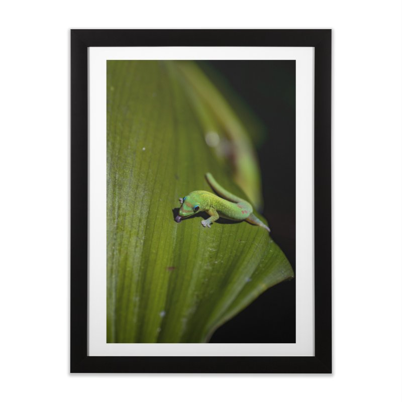 Gold Dust Day Gecko No. 1 Home Framed Fine Art Print by CLINTZERO ONLINE SHOP