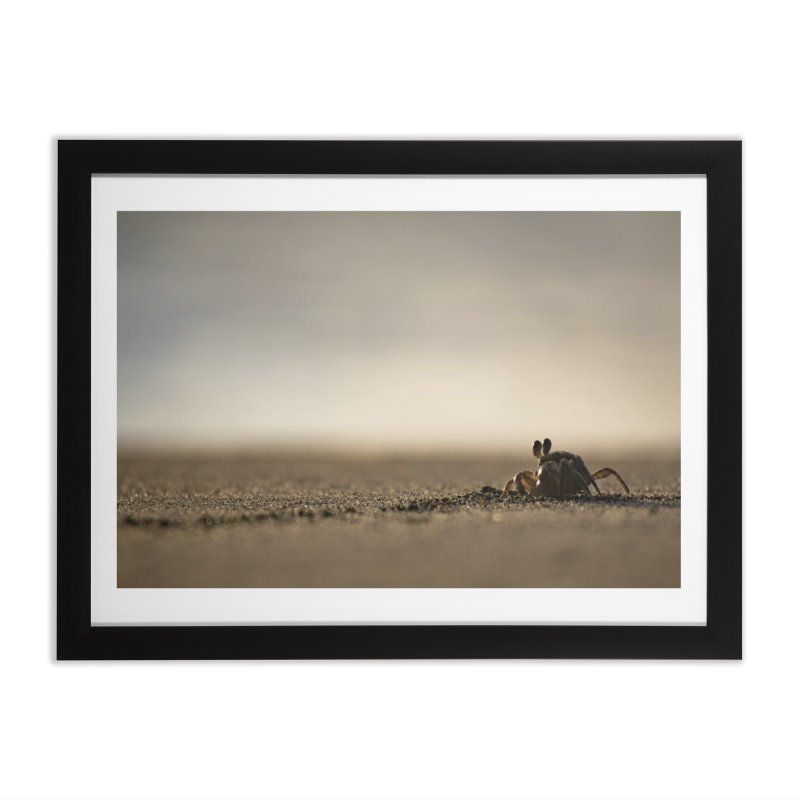 Pallid Ghost Crab Home Framed Fine Art Print by CLINTZERO ONLINE SHOP
