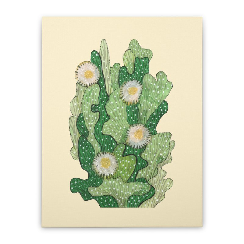 Blooming Cacti, Succulent Flowers, Green White Home Stretched Canvas by Clipso-Callipso