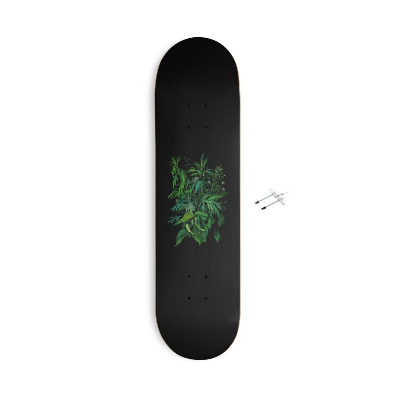 Green & Black, Summer Plants, Floral Art Accessories Skateboard by Clipso-Callipso