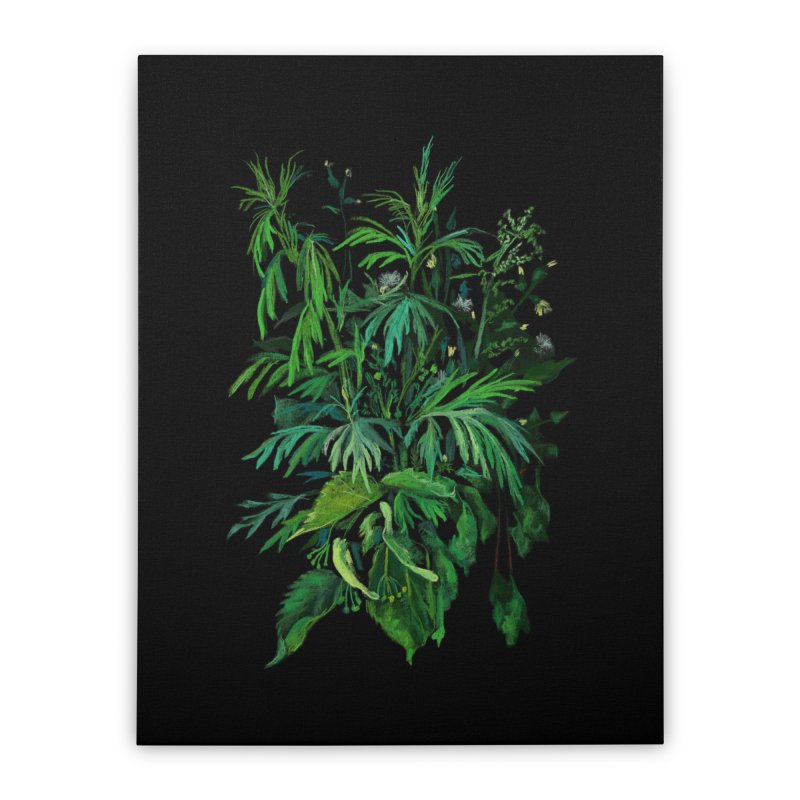 Green & Black, Summer Plants, Floral Art Home Stretched Canvas by Clipso-Callipso