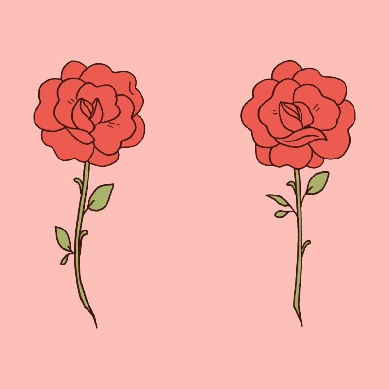 Rose Pals by Cool Boy