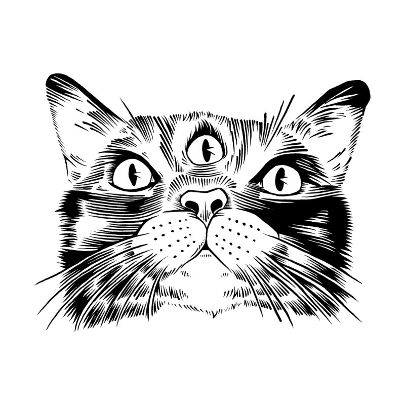 three eyed cat Men's T-Shirt by craighorky's Shop