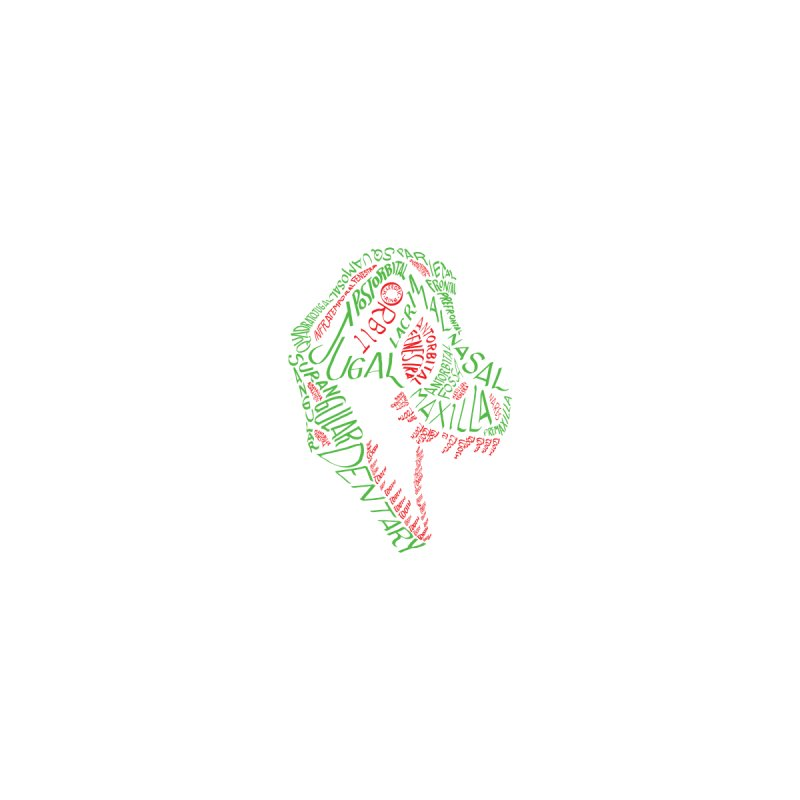 Green and Red Tyrannosaurus Calligram Accessories Greeting Card by cubelight's Artist Shop