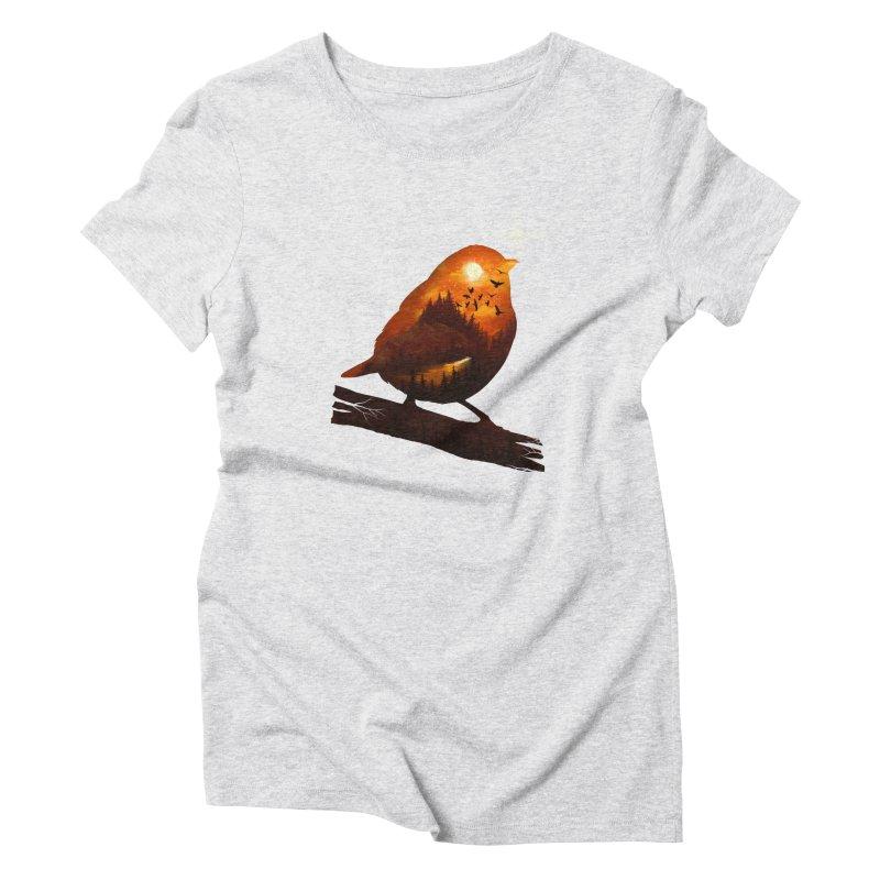 Dream big Women's Triblend T-Shirt by dandingeroz's Artist Shop